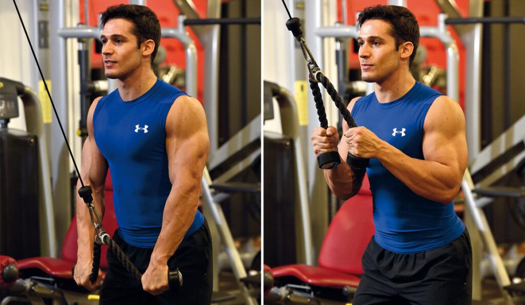 Ejercicios Triceps de Gimnasio